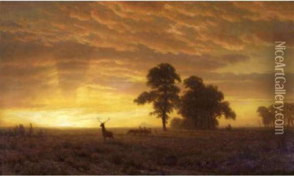 Wapiti Oil Painting - Albert Bierstadt