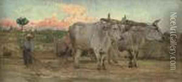 Oxen In The Tuscan Countrside Oil Painting - Giovanni Boldini