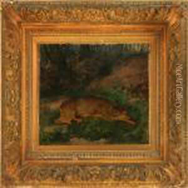 Deer Resting In The Forest Oil Painting - Rosa Bonheur