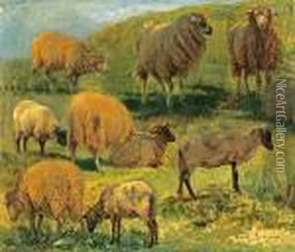 Studies Of Sheep In A Landscape Oil Painting - Rosa Bonheur