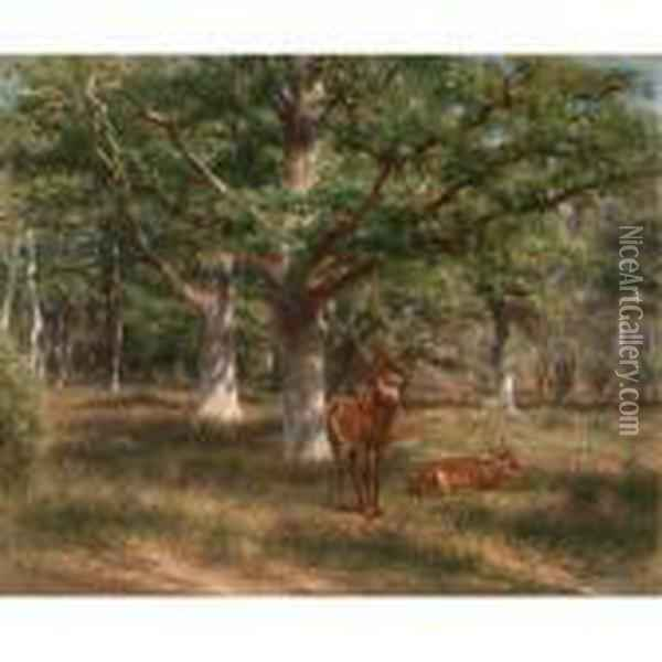 Two Deer In A Forest Glade Oil Painting - Rosa Bonheur