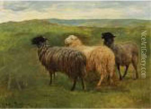 Three Sheep In A Landscape Oil Painting - Rosa Bonheur