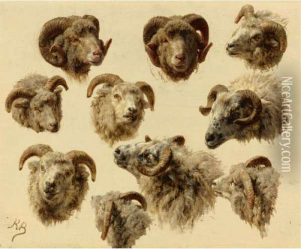 Study Of Rams' Heads Oil Painting - Rosa Bonheur