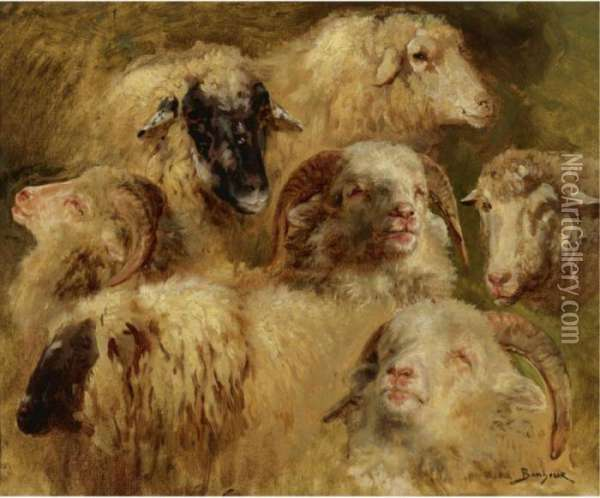 Heads Of Sheep And Rams Oil Painting - Rosa Bonheur