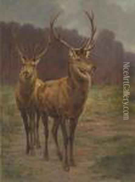 Monarchs Of The Forest Oil Painting - Rosa Bonheur