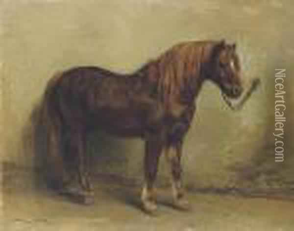 Tethered Pony Oil Painting - Rosa Bonheur