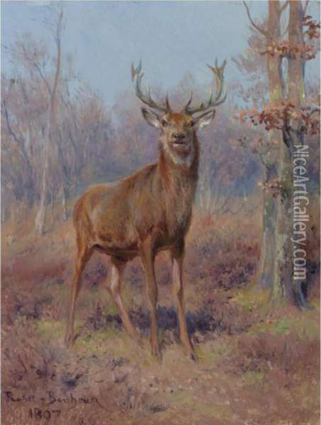 Young Stag In A Wooded Landscape Oil Painting - Rosa Bonheur