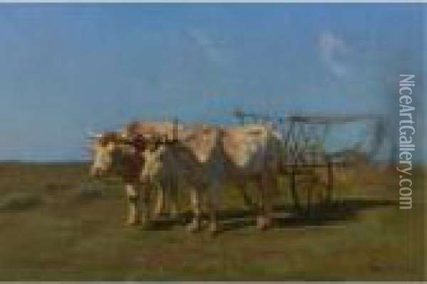 Two White Oxen Pulling A Cart Oil Painting - Rosa Bonheur