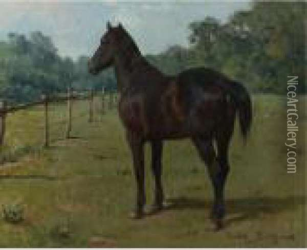 A Bay Horse In A Paddock Oil Painting - Rosa Bonheur