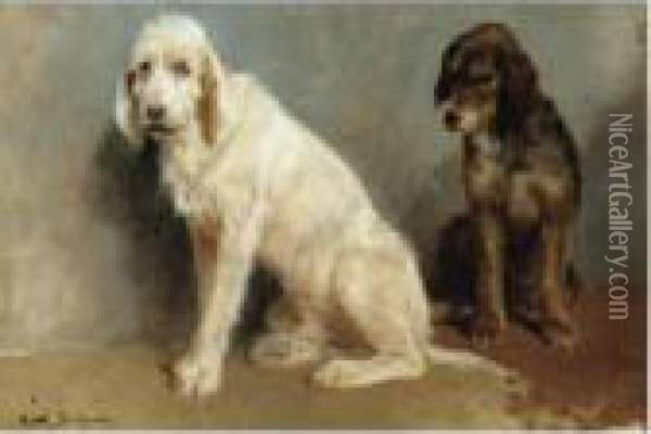 Study Of Two Dogs Oil Painting - Rosa Bonheur