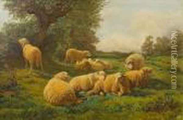 Sheep At Rest In A Meadow Oil Painting - Rosa Bonheur