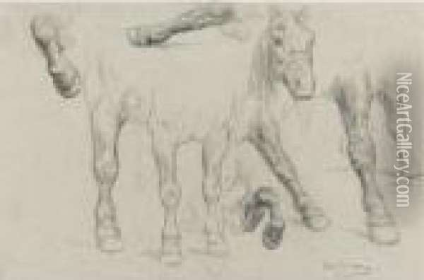 Study For The Horse Fair Oil Painting - Rosa Bonheur