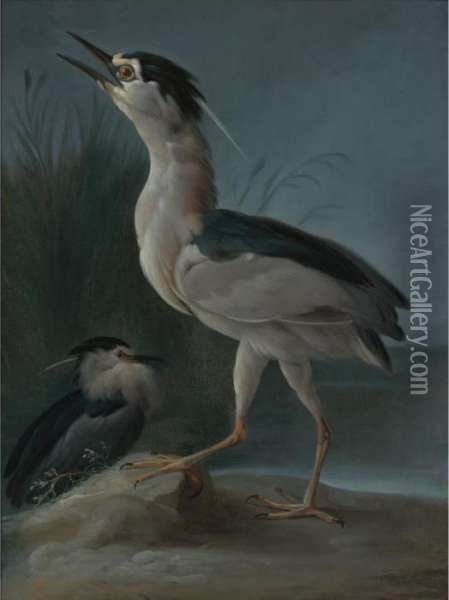 Herons In A Landscape Oil Painting - Rosa Bonheur