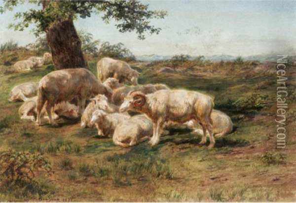 Sheep In The Pasture Oil Painting - Rosa Bonheur