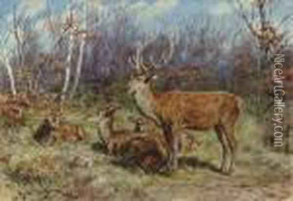 A Buck And Doe In The Forest Oil Painting - Rosa Bonheur
