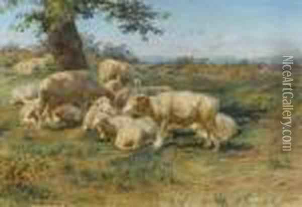 Sheeps In The Pasture Oil Painting - Rosa Bonheur
