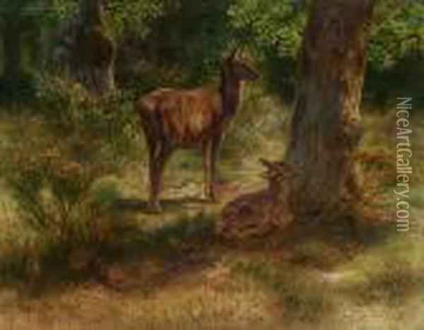 Deer And Fawn In A Wood Oil Painting - Rosa Bonheur