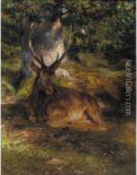 The Stag At Rest Oil Painting - Rosa Bonheur