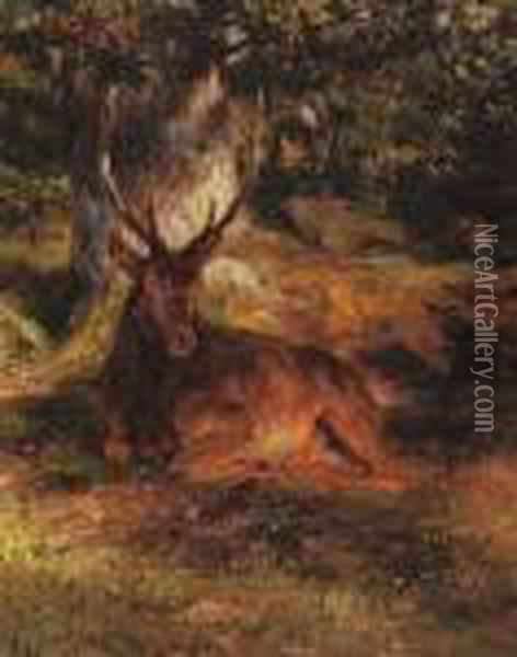 The Resting Stag Oil Painting - Rosa Bonheur