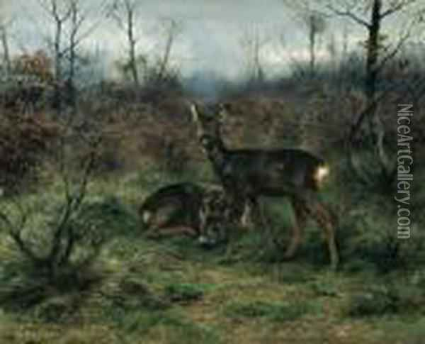 Young Deer In A Forest Clearing Oil Painting - Rosa Bonheur