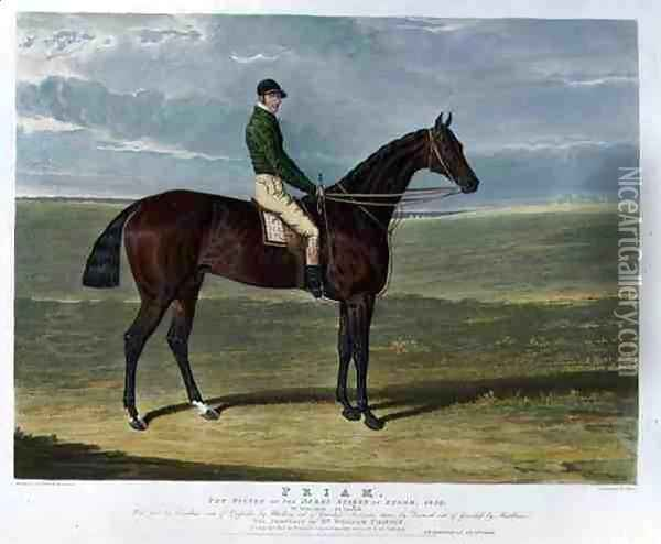 Priam the Winner of the Derby Stakes at Epsom Oil Painting - John Frederick Herring Snr
