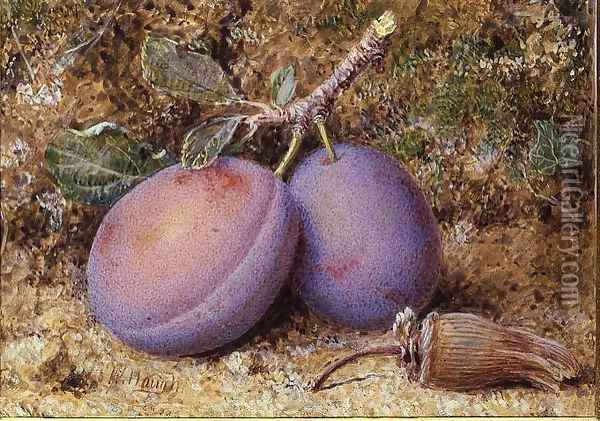 Plums and a cob nut Oil Painting - William B. Hough