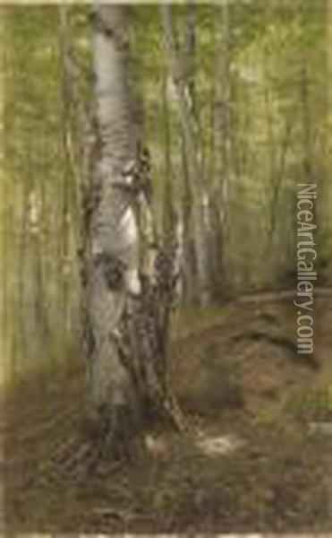 Silver Birches Oil Painting - John George Brown