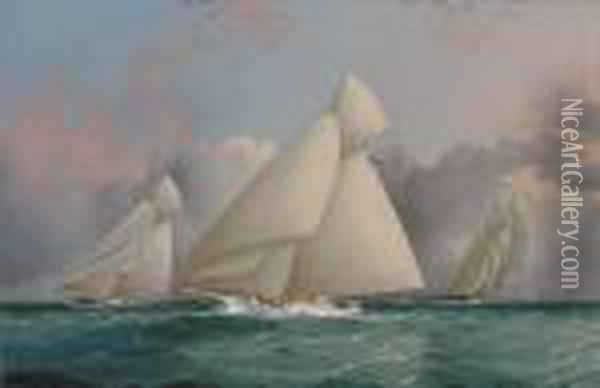 Yacht 'sappho' Beating To Windward Oil Painting - James E. Buttersworth