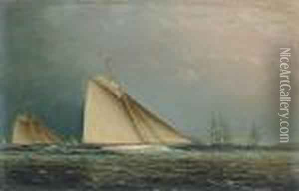 'puritan' Racing Off Of Staten Island Oil Painting - James E. Buttersworth