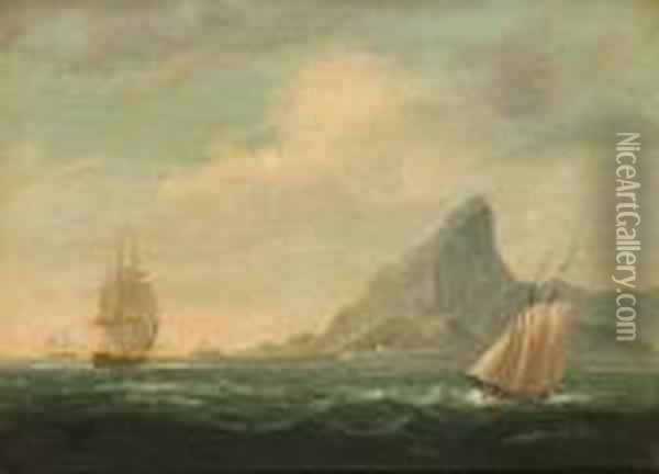 Shipping Off Rio De Janeiro Oil Painting - James E. Buttersworth