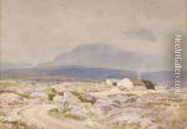 Muckish 