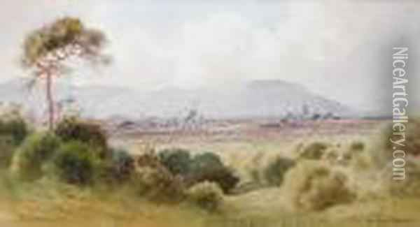 View Of Belfast From Castlereagh Oil Painting - Joseph Carey Carey