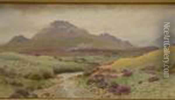 The Mountains Of Mourne Oil Painting - Joseph Carey Carey