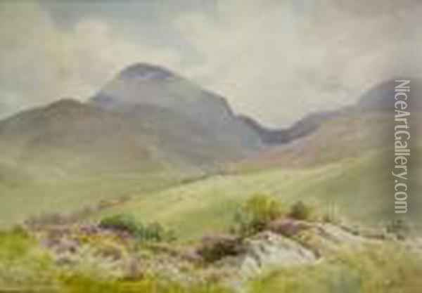 Slieve Donard, Mountains Of Mourne Oil Painting - Joseph Carey Carey