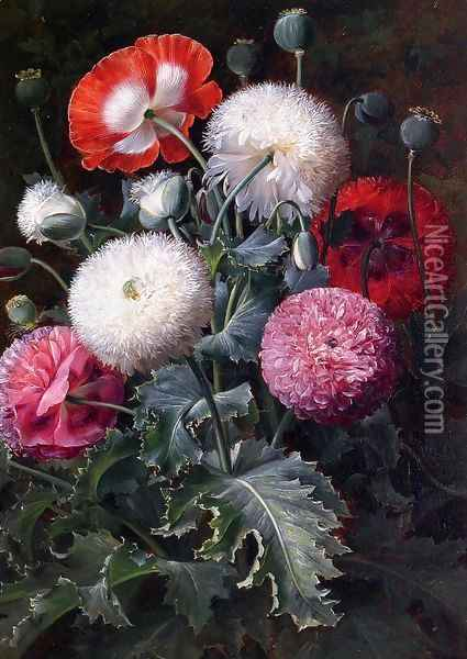 Still Life with Pink, Red and White Poppies Oil Painting - Johan Laurentz Jensen