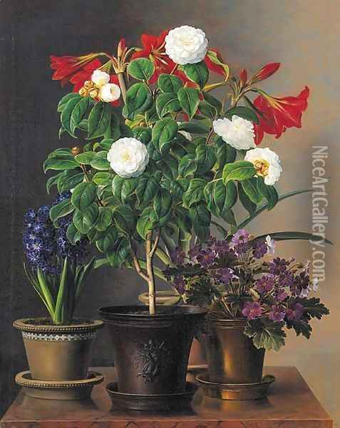 Camelias, amaryllis, hyacinth and violets in ornamental pots on a marble ledge Oil Painting - Johan Laurentz Jensen
