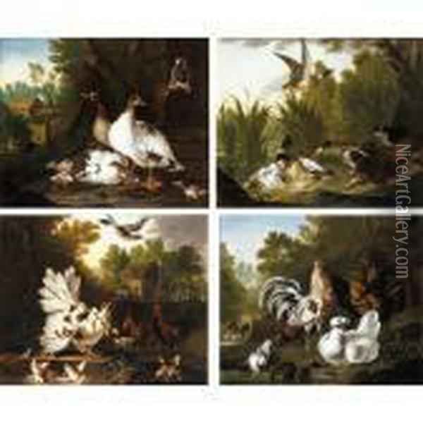 Three Spaniels Startling A Group  Of Ducks In A Pond; A Wooded Landscape With Geese And Their Goslings  Together With A Pair Of Pigeons, A Thatched Barn Beyond; A Wooded Garden  With Cockerels And A Pigeon At The Edge Of A Pond; Chickens And Their Oil Painting - Pieter III Casteels