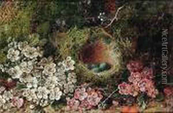 Flowers And A Bird's Nest On A Mossy Bank Oil Painting - George Clare