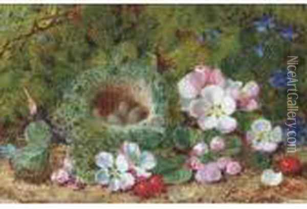 Apple Blossom, Berries And A  Bird's Nest With Eggs On A Mossy Bank;and Grapes, Raspberries And  Greengages On A Mossy Bank Oil Painting - George Clare