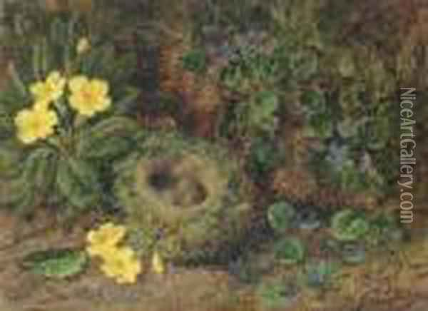 Primroses, Violets And A Bird's Nest With Eggs Oil Painting - George Clare