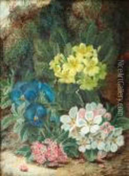 Primroses And Other Spring Flowers On A Mossybank Oil Painting - Oliver Clare