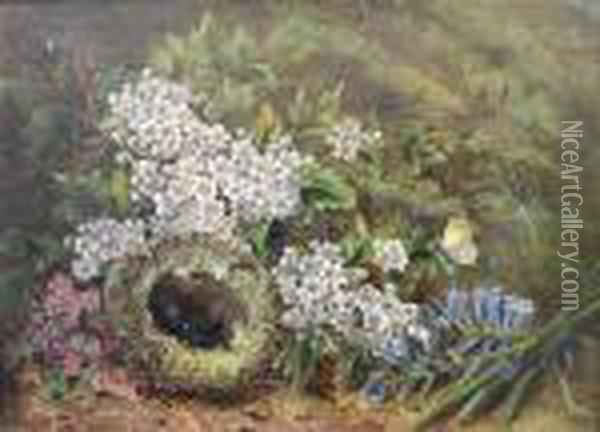 Still Life Of Eggs In A Bird's Nest, Blossomand A Moth On A Mossy Bank Oil Painting - Oliver Clare
