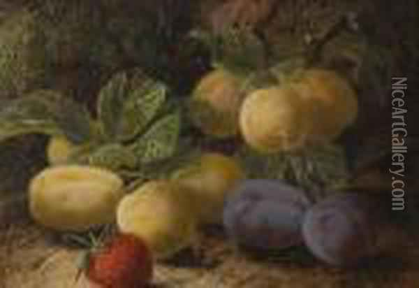 Greengages, Plums And Strawberry On A Mossy Bank Oil Painting - Oliver Clare