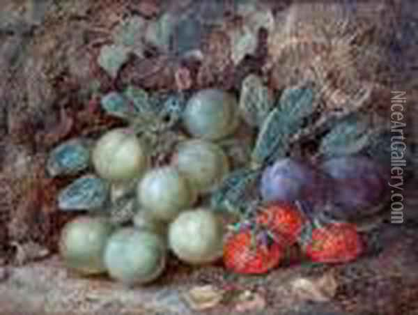 Still Life Of Plums, Greengages Andstrawberries On A Mossy Bank Oil Painting - Vincent Clare