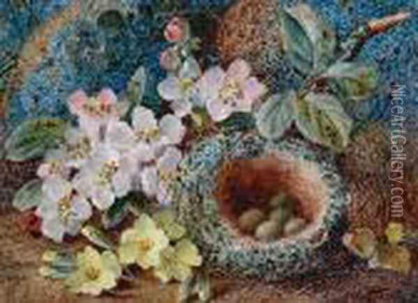Wild Flowers By A Bird's Nest; Primroses Andother Wild Flowers On A Mossy Bank, A Pair Oil Painting - Vincent Clare
