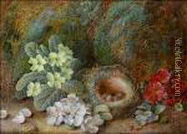 Still Life With Blossom; Primroses Oil Painting - Vincent Clare