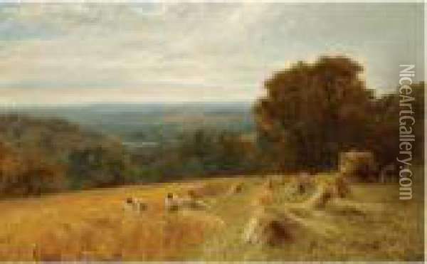 Gathering In The Wheat Harvest,  Between Petworth Andfittleworth, Near Midhurst, South Downs, Sussex Oil Painting - George Vicat Cole