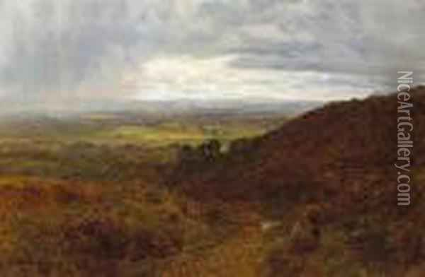 A Surrey Common Oil Painting - George Vicat Cole