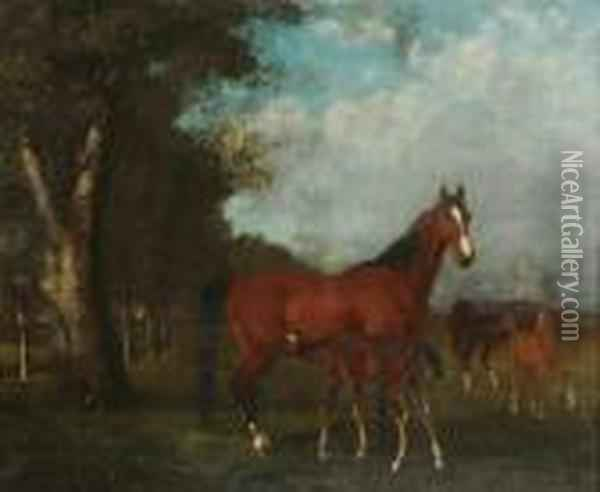 Poulinieres Et Foals Au Paddock Oil Painting - Gustave Courbet