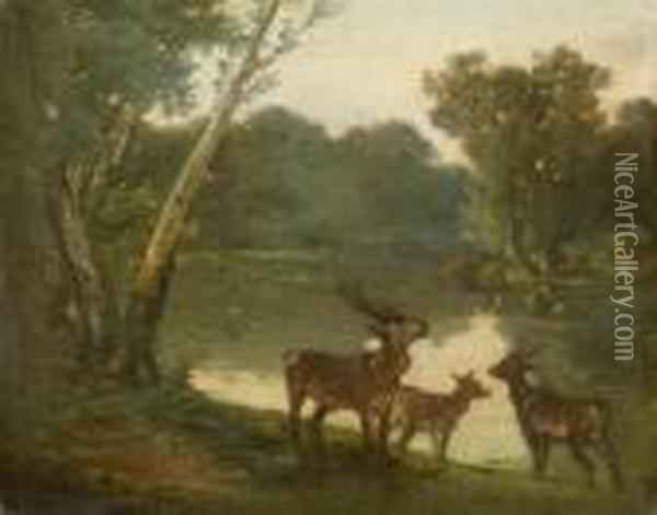 River Landscape With Roe Deer Oil Painting - Gustave Courbet